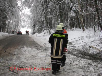 Schneebruch02