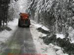 Schneebruch05