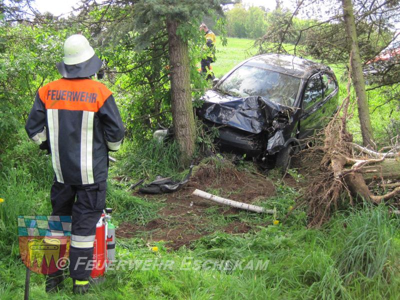 Auto-gegen-Baum