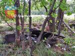 Fahrzeugteile-im-Wald