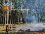 Kaeferholzverbrennung